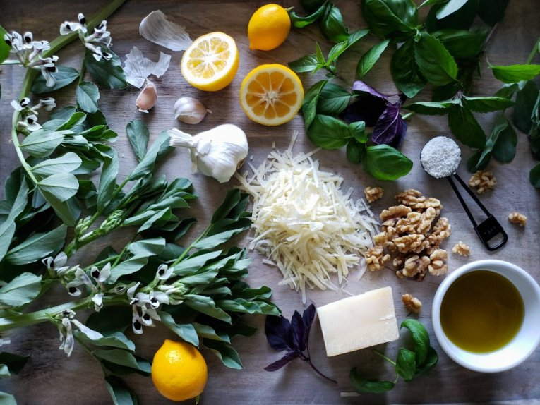 All of the ingredients to make the fava bean green pesto recipe, laying out together. It is stylized food photo, with each item carefully placed to make an artful display. The photo is shot from above, looking down.