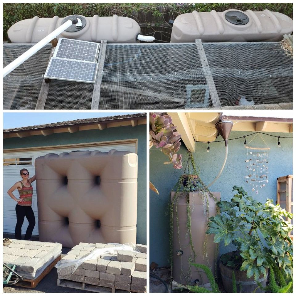 Three images of rain storage tanks. Two of are very large rectangular tanks, about 6 feet tall and long, and 2 feet wide. These hold 530 gallons. Deanna is standing next to the tank for scale, and it is much taller than she is. Another is a more standard round tank, only 140 gallons.
