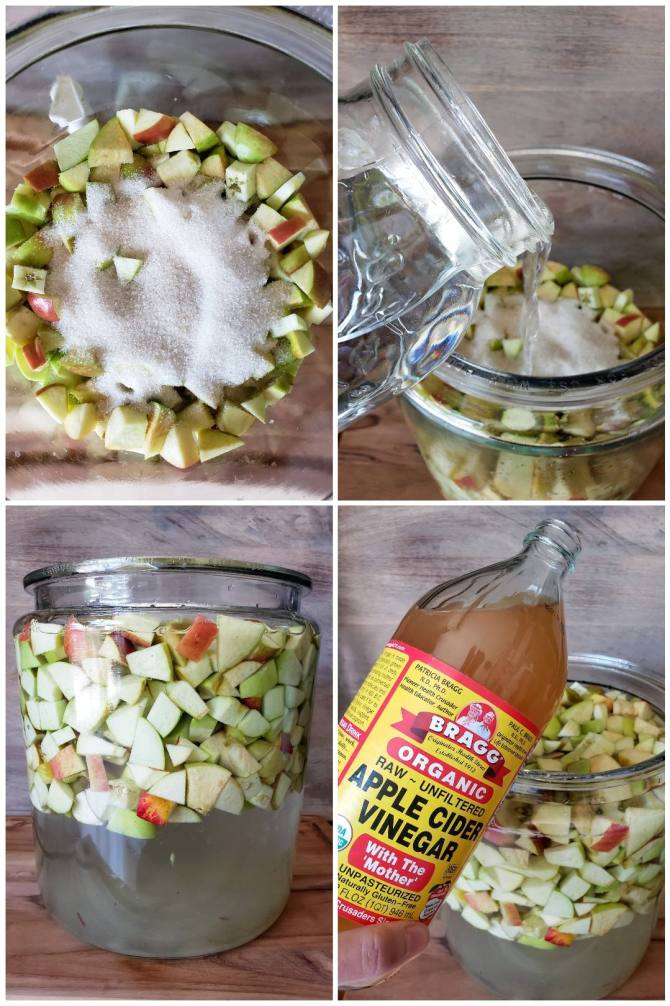 A four way image collage, the first image shows the crock, half filled with apples and a pile of cane sugar sitting on top. The second image shows a jar of water being poured over the top of the apples and sugar. The third image shows the crock full of apple chunks and water, the water is slightly off color due to the mixing of the sugar. The fourth image shows a hand holding a bottle of Bragg Organic apple cider vinegar next to the crock full of water and apples. It will be used to inoculate the soon to be apple cider vinegar.