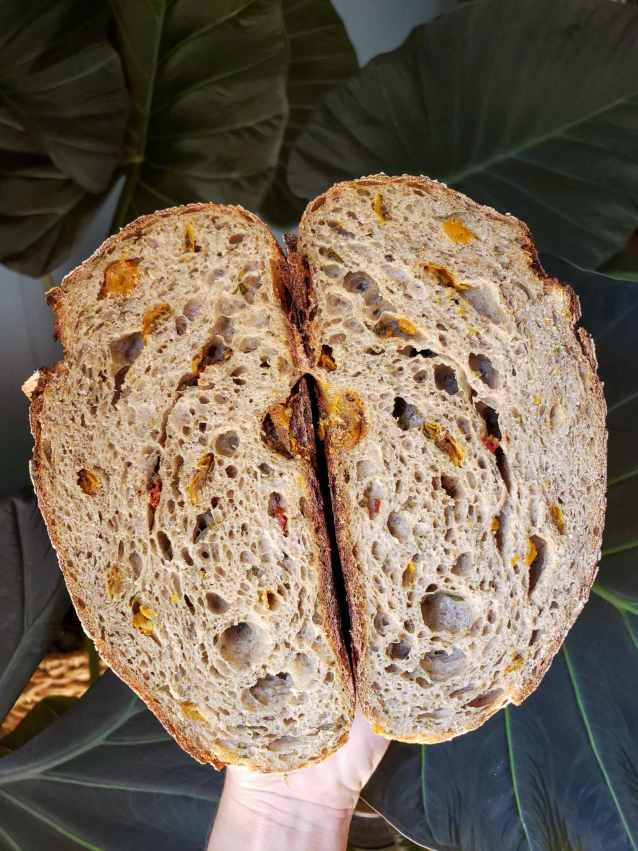 """A hand holding a loaf of bread cut in half. The sourdough loaf has had yellow and red sun dried tomatoes added to it and they are baked into and throughout the loaf of bread. An alocasia or """"Elephant Ear"""" is the backdrop, its huge leaves taking up most of the space."""