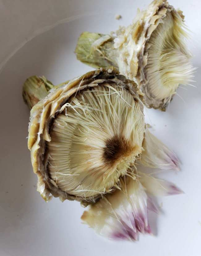 The two artichokes sit in the white bowl with all of the leaves separated from the choke, leaving only the fibrous inner choke portion exposed.