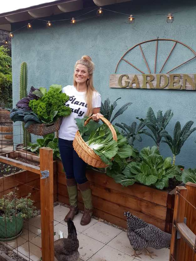 """DeannaCat is holding two wicker baskets that are overflowing with garden greens. She is standing in front of a raised garden bed that is overflowing with bok choy  and lacinato kale. She is wearing a white shirt that says Plant Lady and there is a sign hanging from the house wall that reads """"garden"""". There are two chickens at her feet pecking around."""