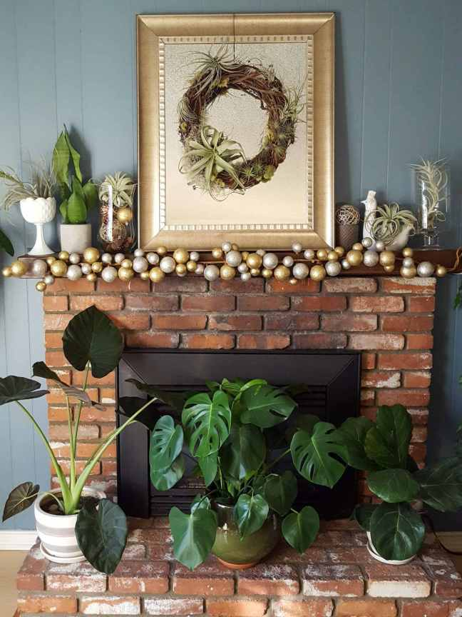 A brick fireplace is shown with three house plants ( an alocasia, a monstera, and A fiddle leaf fig) sitting on the bricks in front of the fireplace. On the mantle there are various tillandsia or air plants displayed in glass candle holders and white milk glass in the shape of a large goblet. There is a larger rectangular mirror on the mantle that has a wooden wreath hanging in the middle of it. The wreath has many air plants attached to it, some small and frilly, some larger and sprawling.