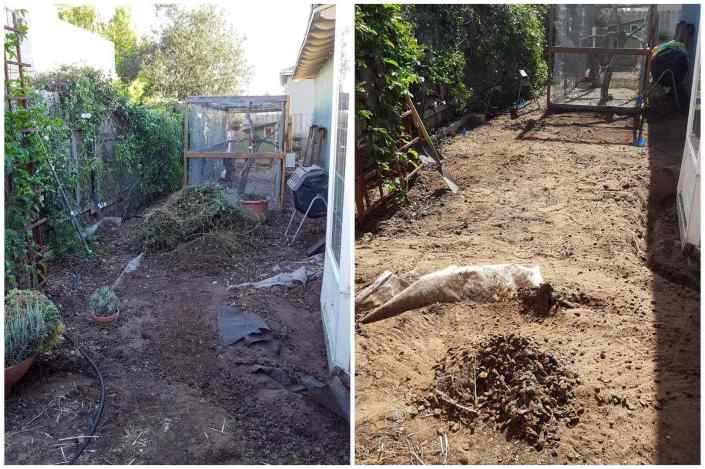 A two way image collage, the first image shows a side yard with brush and dirt piled up with various potted plants mixed in and the end of a chicken run in the background. The second image shows the same side yard once it has been fully cleaned up. There is now only fresh dirt remaining with the end of the chicken run still in the background.