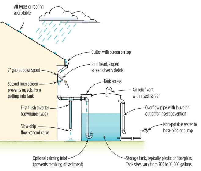 A digram of a rain water capture system. It shows rain landing on a roof, which goes to a gutter, to a downspout, which eventually connects to a rain water tank. It also shows a first flush diverter, overflow pipe, and another outlet with a hose bib for easy use.