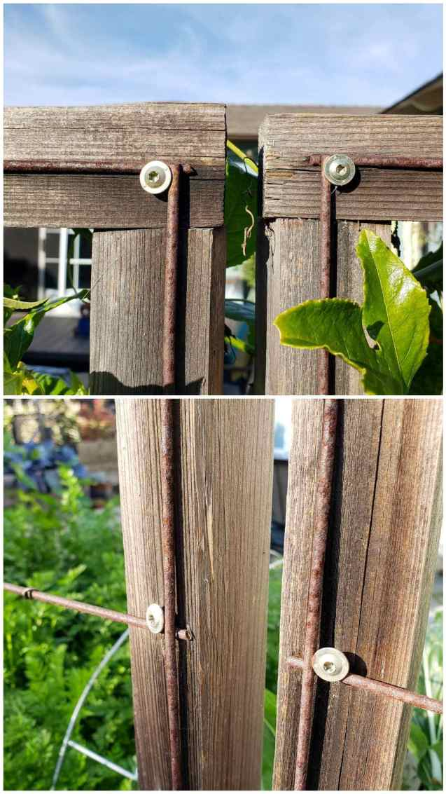 A two way image collage showing cabinet screws keeping concrete remesh attached to wood frames.
