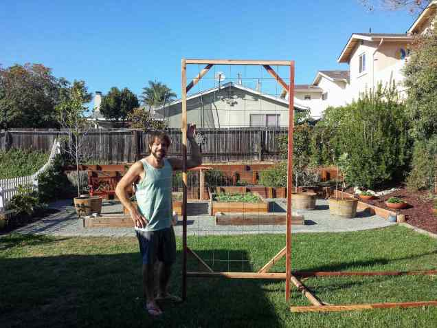 A man is holding the finished trellis made with concrete remesh and wooden frame. The structure is 8 feet tall and is ready to install wherever desired. The background is half grass and half gravel which contains garden beds and wine barrels used as planters.
