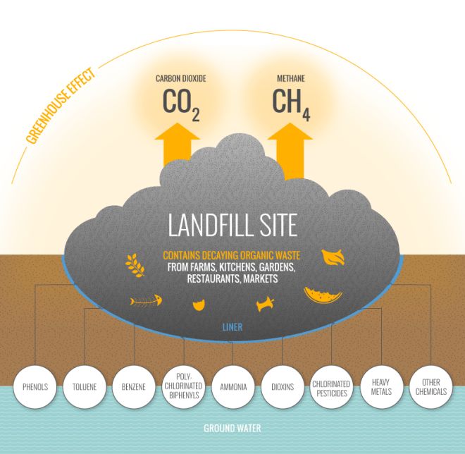 A diagram showing how a landfill site can create a large amount of carbon dioxide and methane gas which gets released into the atmosphere. It also shows how the decaying trash material can release a number of things that can be absorbed into the earth and groundwater such as benzene, ammonia, dioxins, heavy metals, and other chemicals to only name a few.