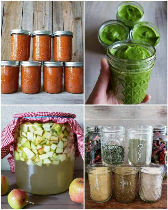 A four part image collage, the first image shows seven pint jars of roasted tomato sauce lined up and ready to freeze for preservation. The second image shows a hand holding a half pint mason jar full of freshly made pesto sauce while three full jars sit in the background. The third image shows a glass crock full of apple chunks, water, and sugar which is the start of making your own apple cider vinegar and the fourth image shows five pint jars of different seasonings, they are oregano, onion powder, lemon powder, chili powder, and garlic powder. There are two half gallon mason jars in the background full of dried chilis. Preserving your harvest is a key step to start a homestead.