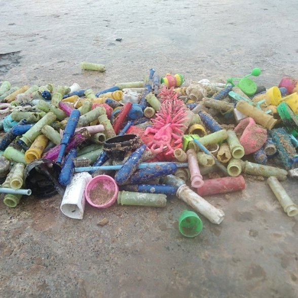 An image of hundreds of tampon applicators that were washed up onto a beach after floating around in the ocean for an unspecified amount of time.