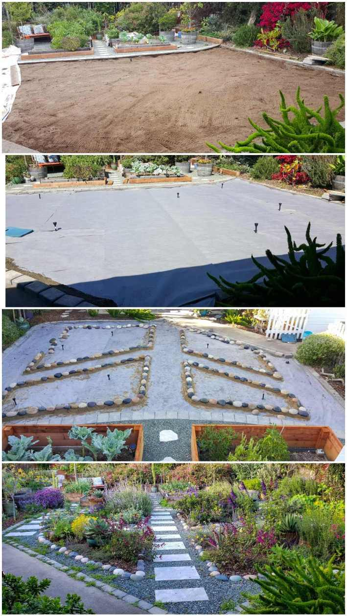 """A four way image collage showing the front yard space after lawn removal. The first image shows the front yard after the grass was completely removed, there is only bare dirt left behind. The second image shows the same area after landscape fabric has been installed over the dirt and there are irrigation manifolds sticking up in specific locations for future watering of plants. The third image shows the same area after four planting areas or """"island"""" have been lined with cobblestone. The final image shows the area after it has been finished. There are many flowering plants and vegetables growing in many areas amongst green rock gravel and paver lined pathways."""