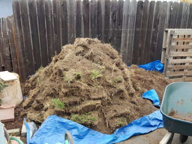 The aftermath when one choses to remove grass. A large pile of removed sections of grass on top of a tarp. The backdrop is a wooden fence. There is a lot of visible weeds and excess dirt which shook loose of the grass roots.