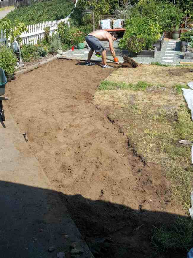 Aaron is removing the grass of the front half of the front yard. He has dug our a section that resembles the state of California. It is barren dirt and the rest of the lawn remains. It is being dug out in 1 foot by 1 foot sections.