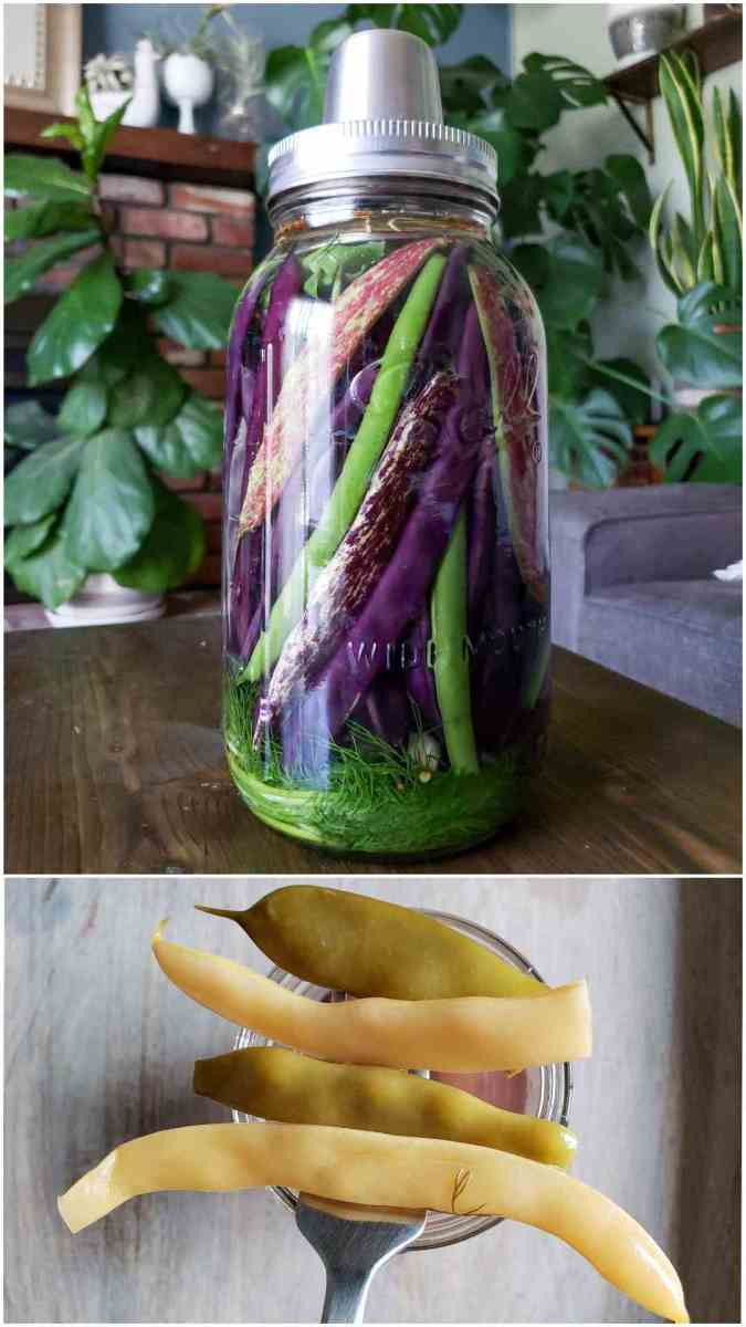 Two part image collage, the first image shows a half gallon Mason jar filled with a variety of string beans, some are green, purple, and purple and white combination. The jar also contains dill and fermenting liquid, the jar also contains an air lock lid for safe fermentation. The second image shows a spoonful of the beans after they have been fermented. Their color has faded into mute greens and light white, but they pack a bright punch of flavor along with the probiotic benefits.