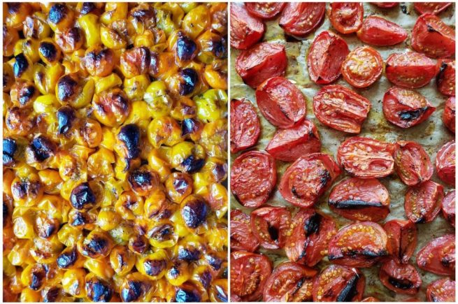 A two way image collage, the first image is a close up of the sungold tomatoes after they have been roasted. They are now slightly shriveled from their juicing exploding during the roasting. Many of the tomatoes have been caramelized and are light to dark brown and even black in some spots. The second image shows a close up of the red tomatoes after roasting. The tomatoes have retained more of their insides compared to the sungolds, yet they still show signs of caramelization and have diminished slightly in size.