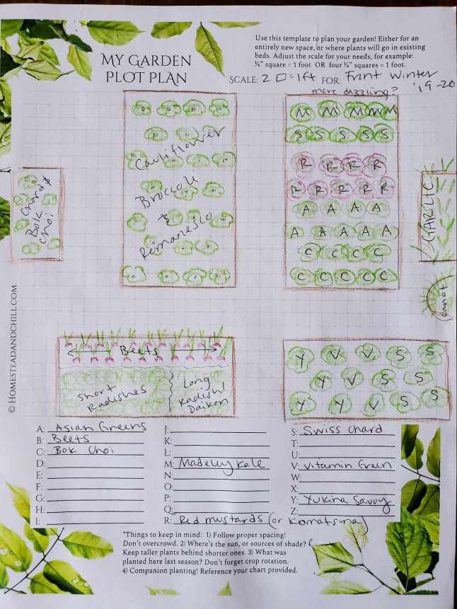 """An image of a completed """"My Garden Plot Plan"""" on a piece of paper. There are multiple garden beds drawn on graph paper, each bed has plants that  are labeled by a letter drawn in them  There is a key at the bottom of the page that is labeled A-Z, next to each letter is a plant variety associated with it. For an example, """"S"""" stands for swiss chard."""