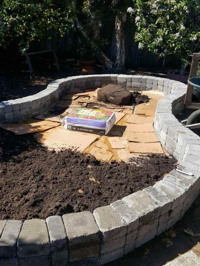 A raised stone paver island is shown that is in the shape of a kidney bean. It is three pavers tall and the inside has been lined with cardboard. Bags of soil are in the process of being opened and spread over the top of the cardboard.