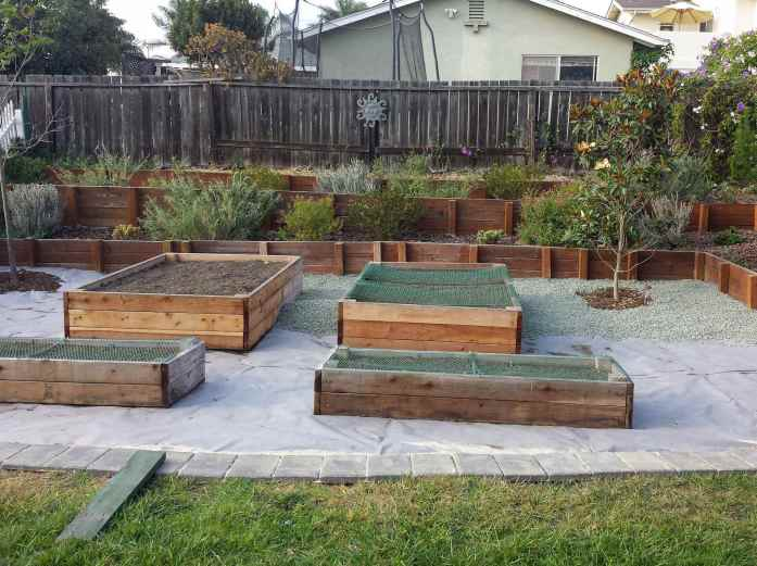 Four raised garden beds are shown surrounded by commercial duty landscape fabric with gravel being applied to the top of that. There is bark  surrounding the two trees shown as well as larger bark in the perimeter amongst perennials and shrubs. This shows all the types of mulch that one can use in a space.
