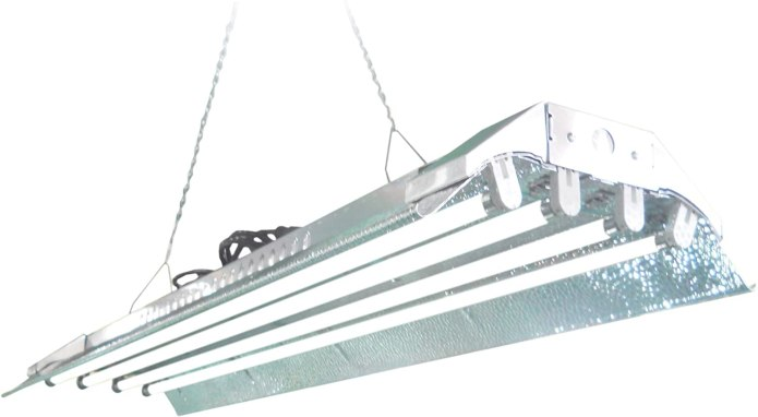 A box style T5 florescent light with four bulb ballast.