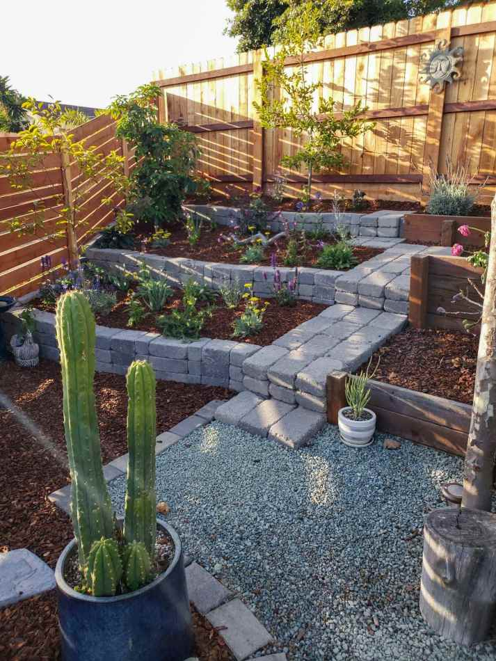 A stone terraced corner of a yard that is three tiers tall with various perennial plants and fruit tree planted in each tier. The backdrop is a fence along the back and side of the terrace. A large cactus in a ceramic pot takes up a portion of the foreground. There are pavers made into a landing/steps that lead up to the different levels of the terrace. The sun is shining in casting rays onto the fence in the background.