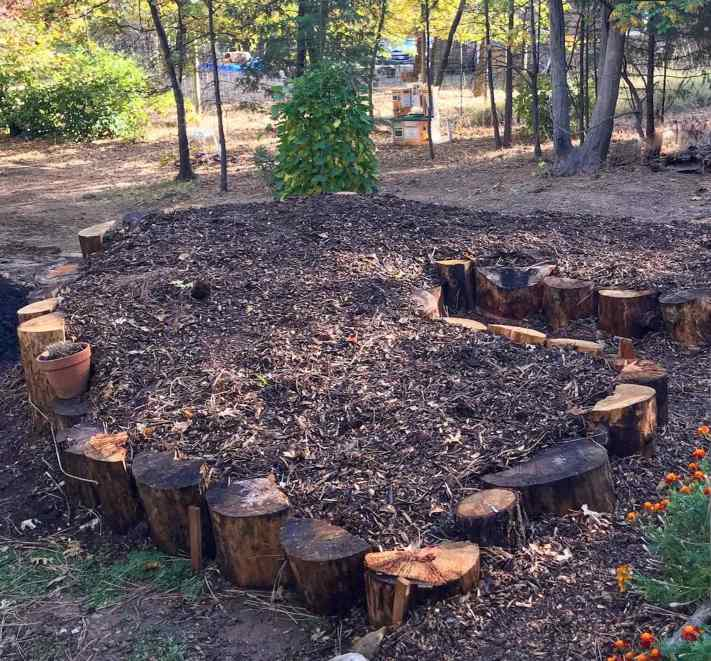 A large swathe of soil with compost and wood chips for mulch is surrounded with many large logs of varying height stood straight up and down. Using downed logs as a material for raised garden beds is a great way to re-use fallen timber.