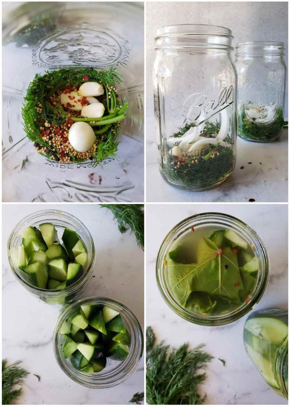 A four way image collage, the first image shows the inside of a quart jar with fresh dill, garlic cloves, mustard seeds, red chili flakes, and peppercorns nestled into the bottom. The second image shows the side of the jars after onion slices are added to the top of the previous ingredients listed. The third image shows a birds eye view of the jars after they have been packed with cucumber spears lengthwise into the jar. The tops of the cucumber spears are visible from above. The fourth image shows a birds eye view of the top of the jar after the brine has been added and grape leaves are stuffed into the top as a cap due to the tannins the leaves contain which helps produce a crisp refrigerator pickle.