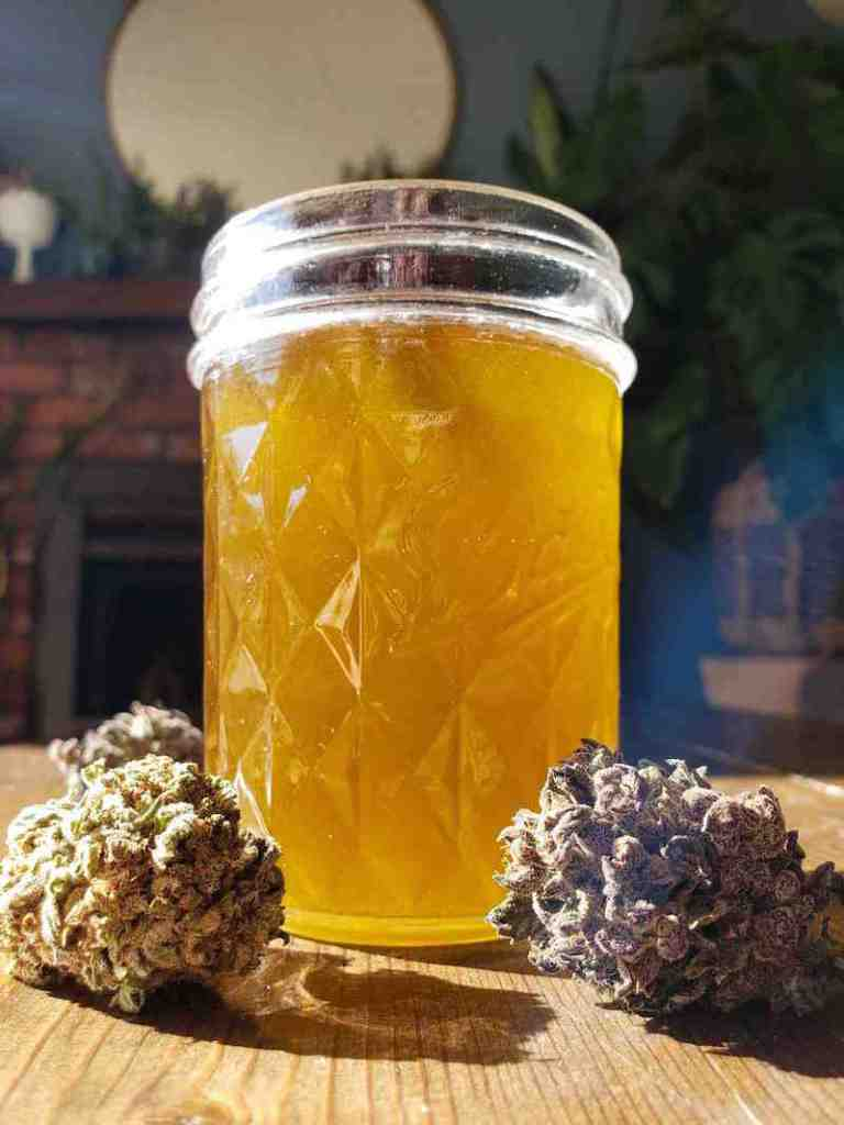 A half pint mason jar is full of freshly made cannabis infused coconut oil. It is cooling so the oil is still in a liquid state, it is glowing yellow in the sunlight and there are two cannabis flowers flanking the front of the jar, their trichomes sparkling in the sun.