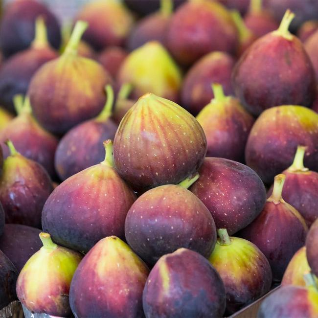 Many purple to brownish bronze figs sit stacked atop each other with their stems pointing upwards.