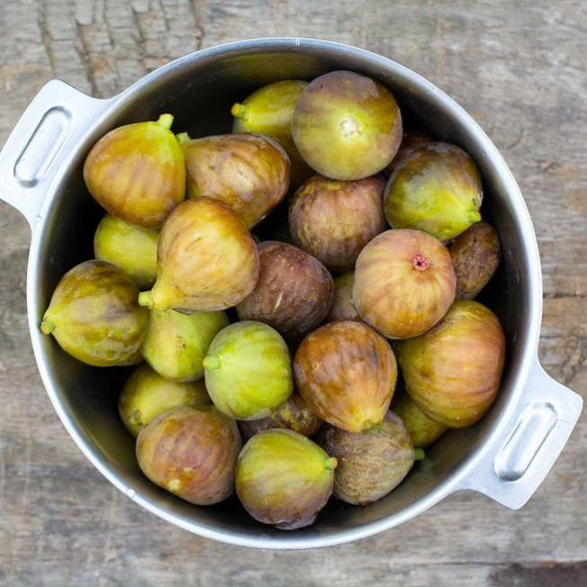 A metal bowl is full of bronze to brown colored figs that are medium in size. For those with long and warm growing seasons, choose fig varieties that have two crops per year so you can enjoy figs for months on end.