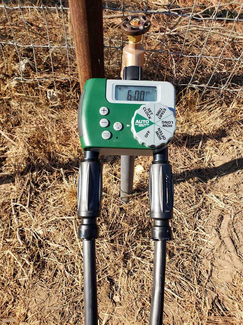 A drip irrigation hose bibb set up with an automated timer connected to two 3 in 1 drip adapters that are connecting the drip tubing to the whole system.