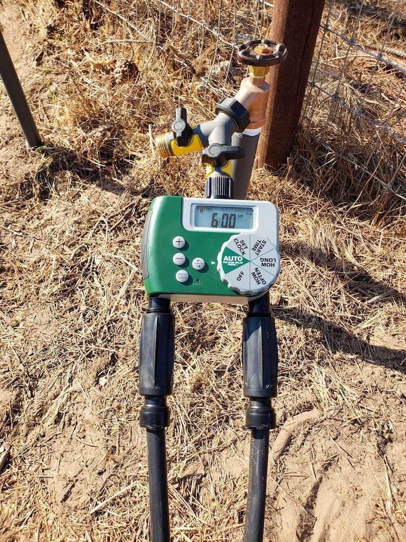 """A raised water spigot has a """"Y"""" valve attached to it, connected to an automated timer with two 3 in 1 drip adapters that is connecting the drip tubing to the whole system."""