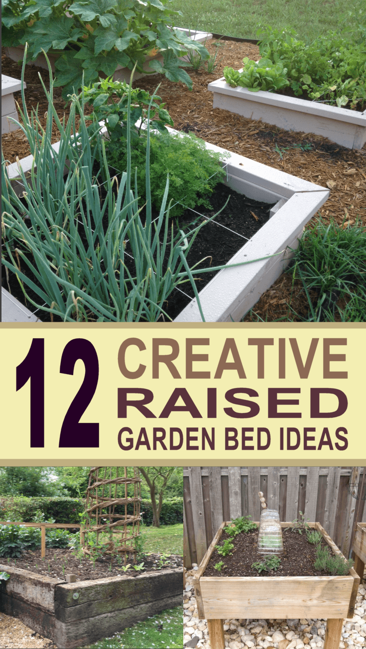 Raised Diy Garden Cheap Beds
