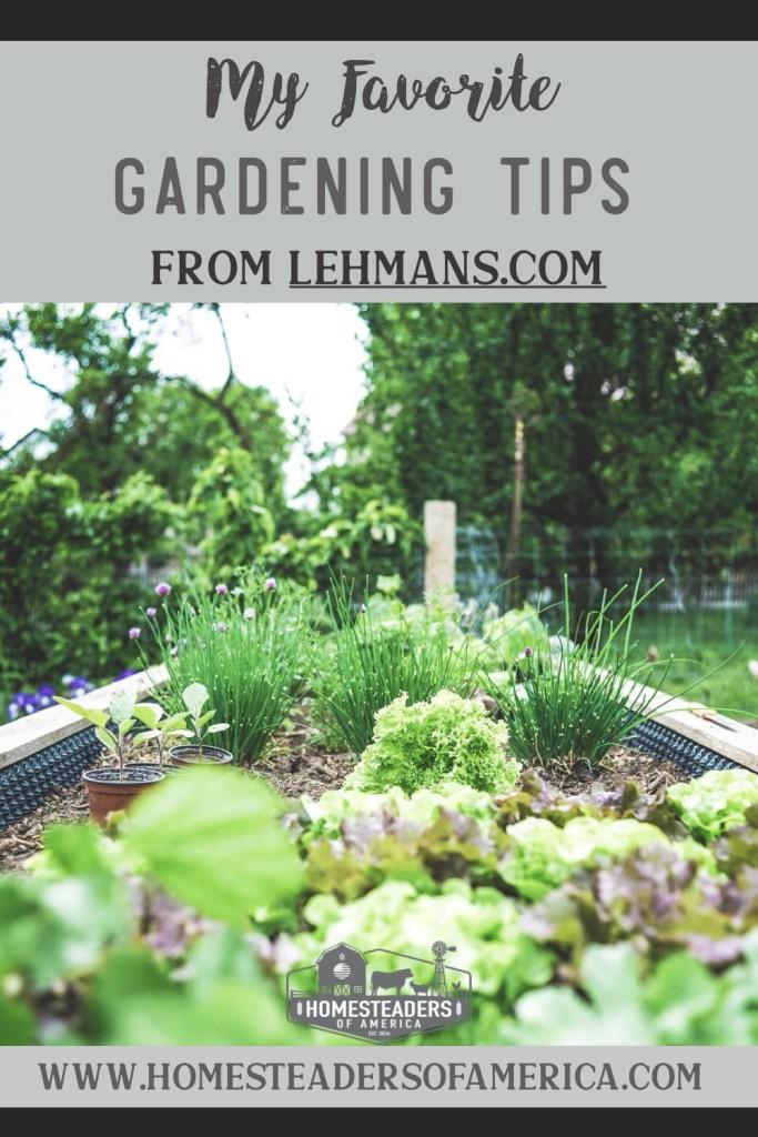 My Favorite Gardening Tips