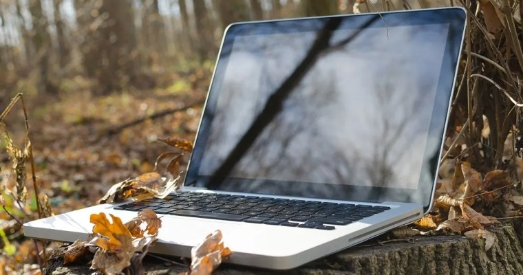 How to Connect with other Homesteaders Online