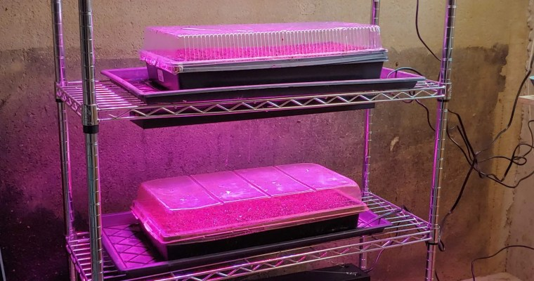 How to Build a Grow Light Stand
