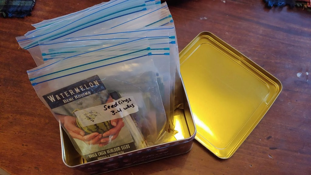 organizing seeds according to your seed starting schedule in ziploc bags