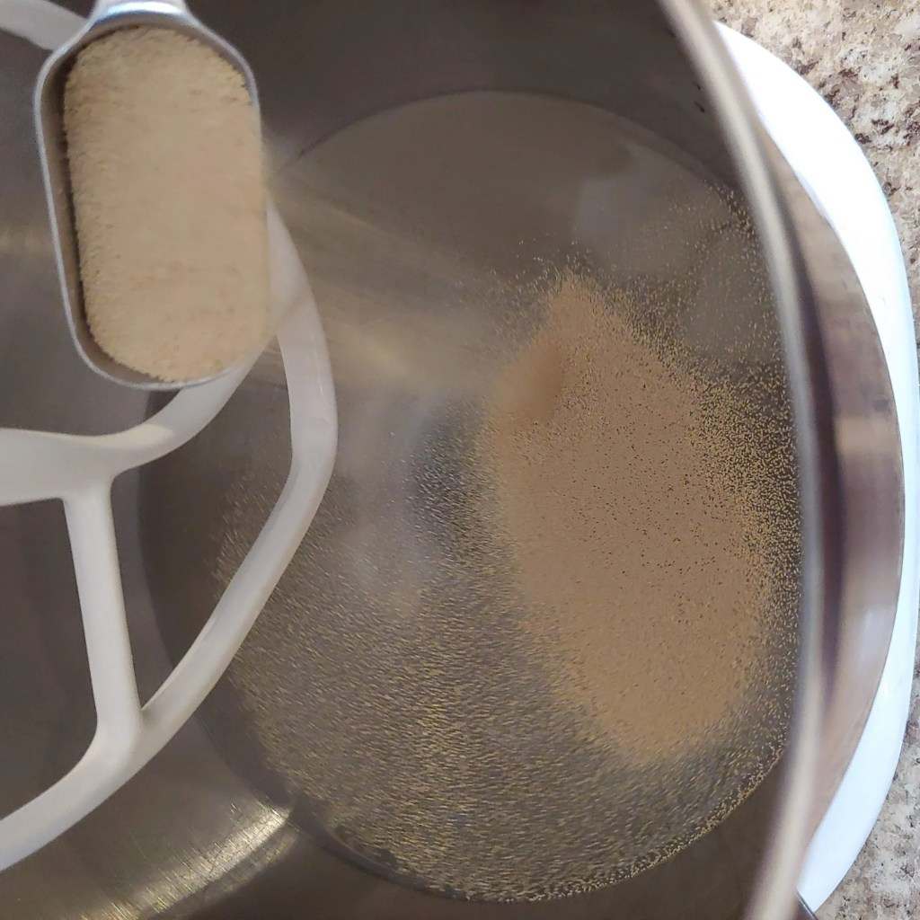 Warm water and yeast in bowl