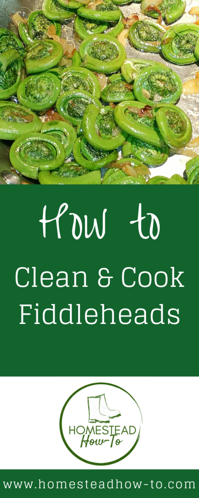 How to clean and cook fiddleheads PIN