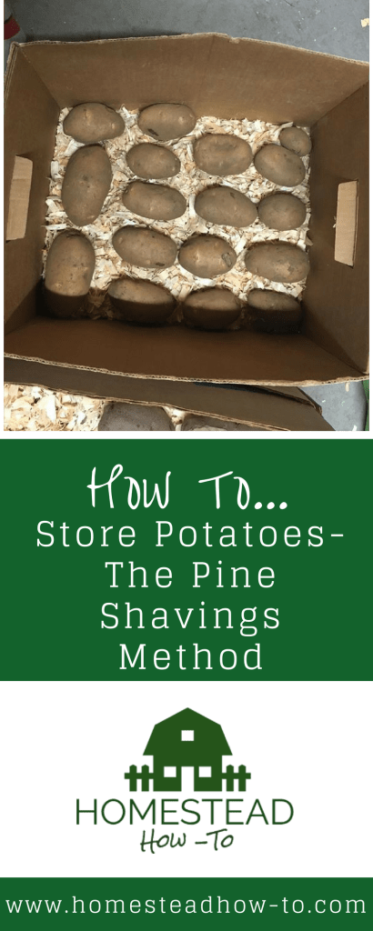 How to Store Potatoes PIN