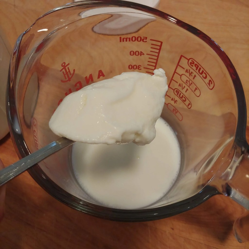 stirring in yogurt starter