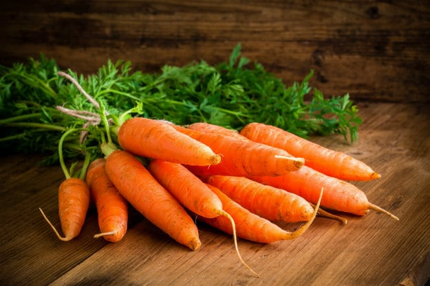 Companion Plants For Your Survival Garden carrots