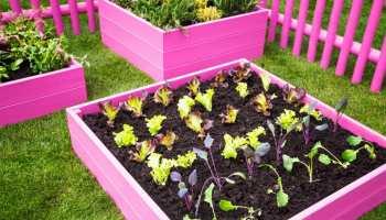 How to Build a Raised Flower Bed Garden   DIY VIDEO TUTORIAL Raised Planter Box Along Fence Backyard Ideas Las Vegas on