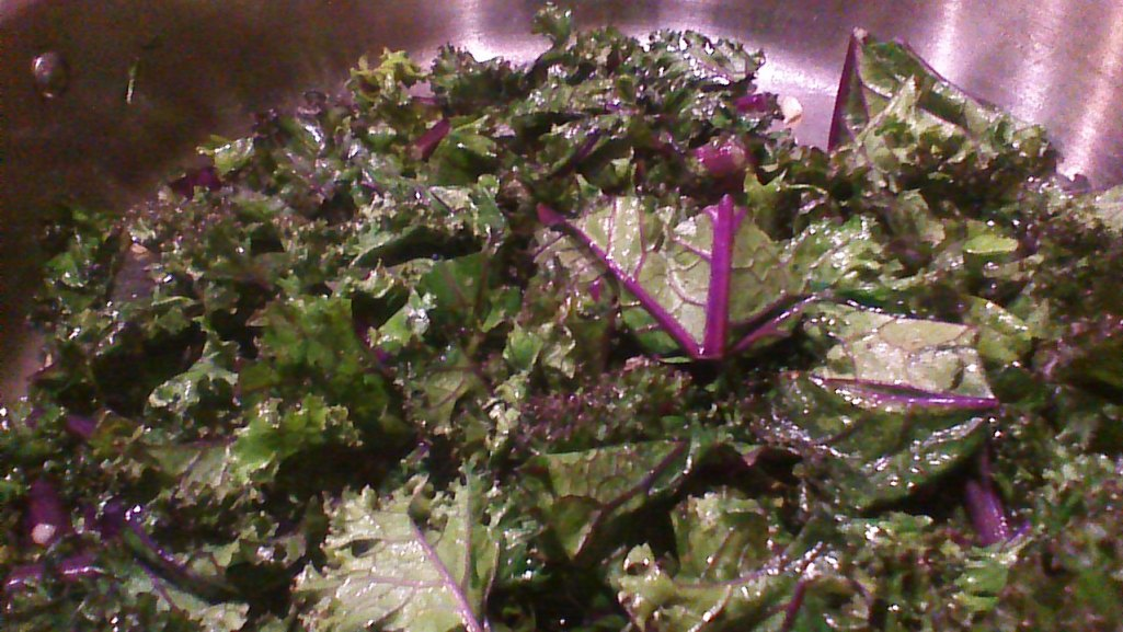 Sauteed Red Kale