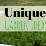 Unique Garden Ideas – See My Bathtub Gardens!