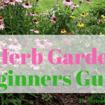 Easy Herb Gardening Beginners Guide