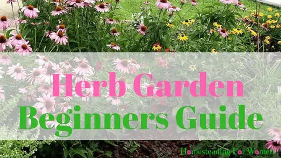 Easy Herb Gardening Beginners Guide (1)