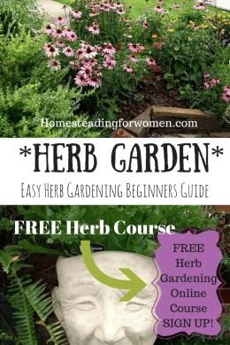 Easy Herb Gardening Beginners Guide