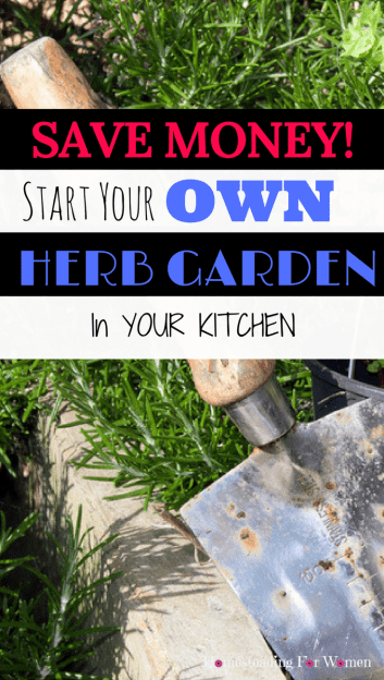 Start Your Own Herb Garden In Your Kitchen