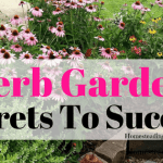 Herb Garden Secrets To Success