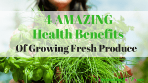 4 Amazing Health Benefits Of Growing Fresh Produce